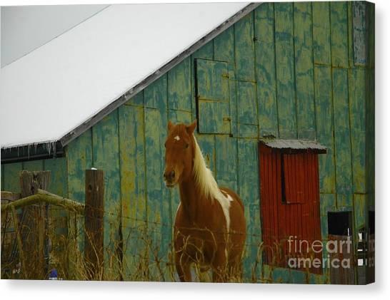 The Green Barn Canvas Print