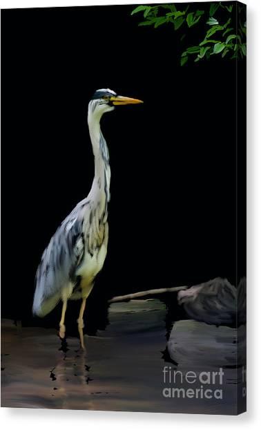 The Grey Heron Canvas Print