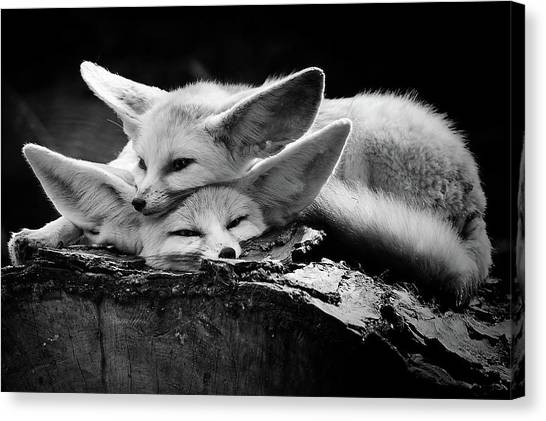 Tenderness Canvas Print - The Happy Couple by Inna Blar