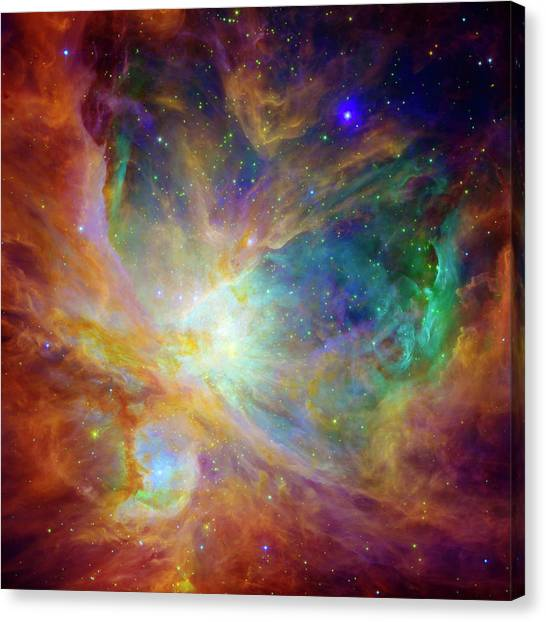 Outer Space Canvas Print - The Hatchery  by Jennifer Rondinelli Reilly - Fine Art Photography