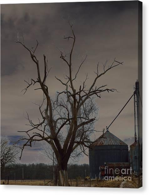 The Haunting Tree Canvas Print