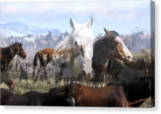 The Herd 2 Canvas Print