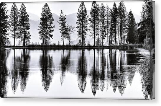 The Heron Pond Canvas Print