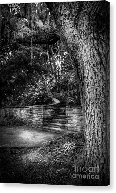 Pavers Canvas Print - The Hidden Steps 1 by Marvin Spates