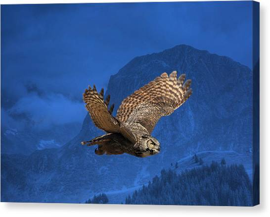 The High Country Canvas Print