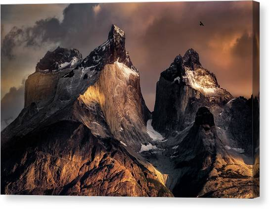 Chilean Canvas Print - The Horns At Sunrise by Vincent Chen