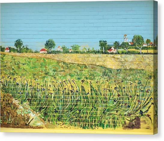The Irises Of Macpherson Canvas Print