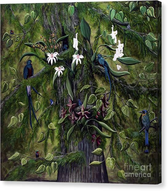 The Jungle Of Guatemala Canvas Print