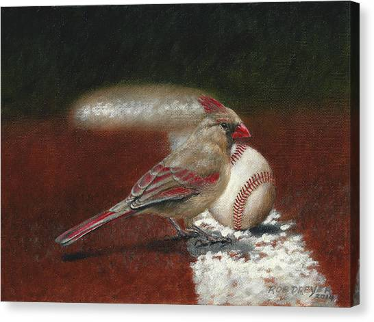 St. Louis Cardinals Canvas Print - The Lady Loves Her Baseball by Dreyer Wildlife Print Collections