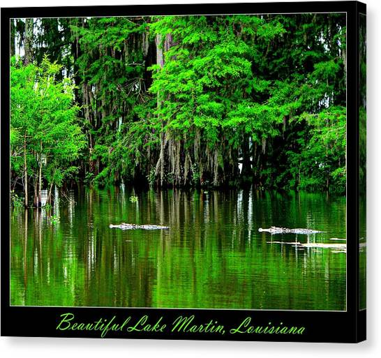 The Lake Martin Habitat Canvas Print