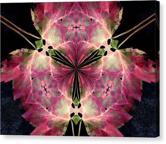 The Last Leaf Canvas Print by Diane Carlson