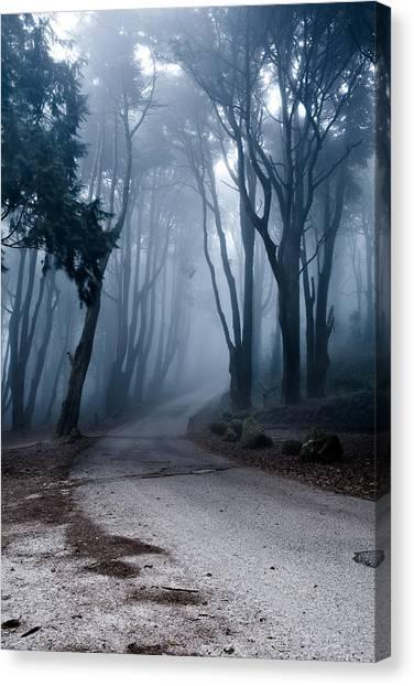 The Last Road Canvas Print