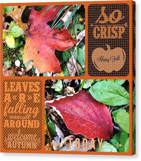 Wallpaper Canvas Print - The Leaves Have Been Falling For A by Teresa Mucha