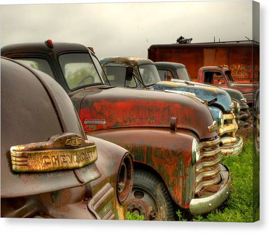 Classic Chevrolet Truck Canvas Print - The Line Up 2 by Thomas Young