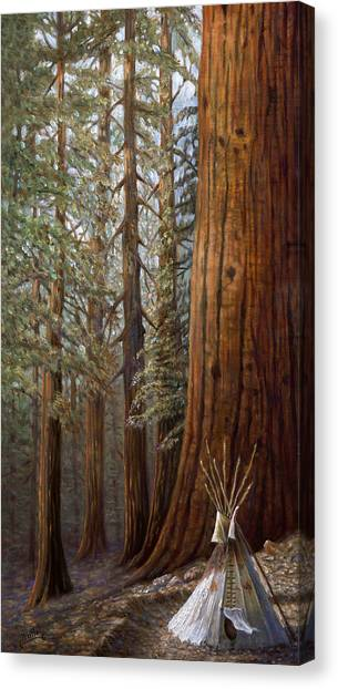 Mountain West Canvas Print - The Lone Tee Pee Redwood by Gregory Perillo