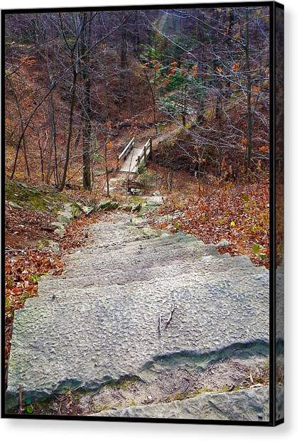 The Long Lonely Trail... Canvas Print