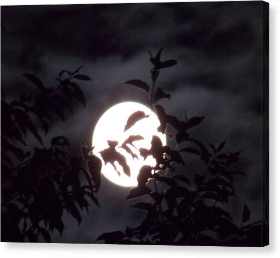 The Lovers Moon Canvas Print