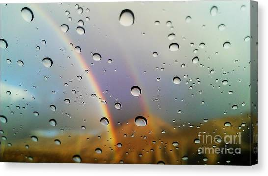The Luck Of Rain Canvas Print