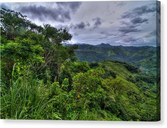 The Lush Greens Of Costa Rica Canvas Print