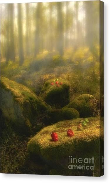 Painterly Canvas Print - The Magic Forest by Veikko Suikkanen