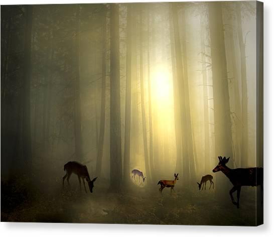 The Magic Of Sunrise Canvas Print