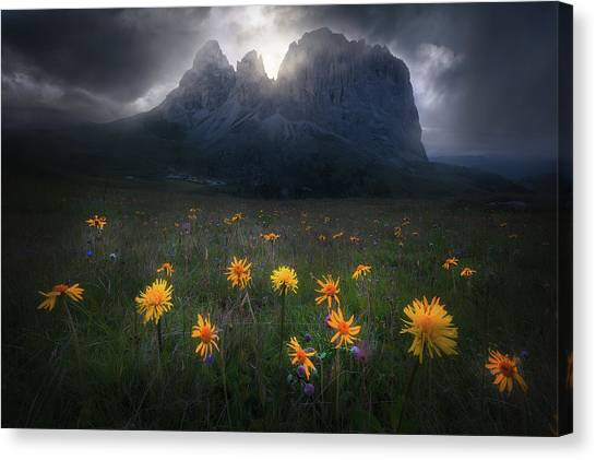 Wildflowers Canvas Print - The Majesty Of Sassolungo by Luca Rebustini