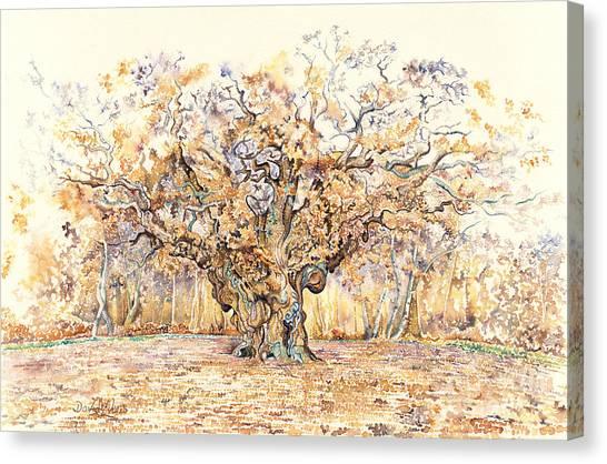 Sherwood Forest Canvas Print - The Major Oak Of Sherwood Forest by David Evans