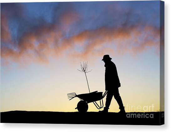 Garden Canvas Print - The Man Who Plants Trees by Tim Gainey