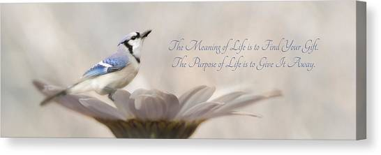 Bluejays Canvas Print - The Meaning Of Life by Lori Deiter