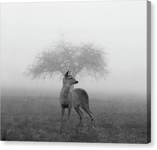 The Mist Canvas Print