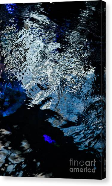 The Mood Of Discontent Canvas Print by Rossi Love