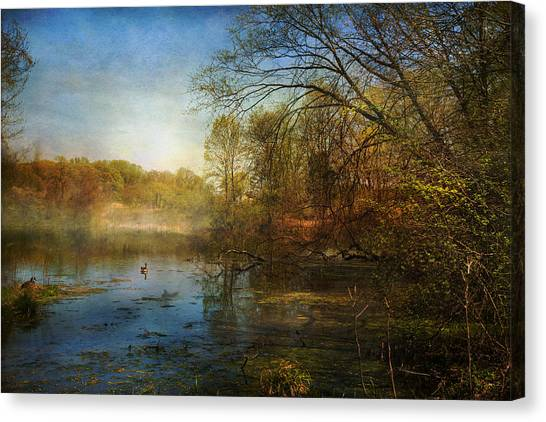 The Morning Begins Canvas Print