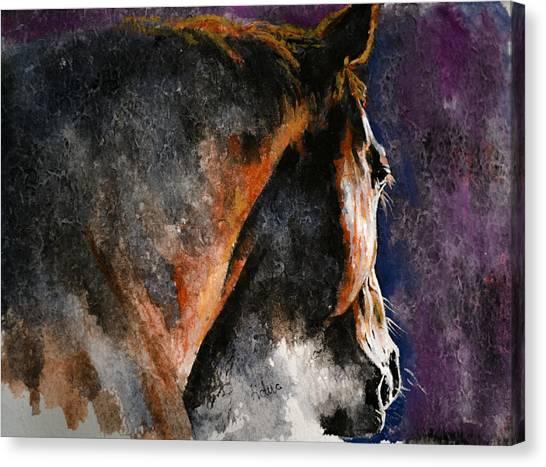 Cold Sunrise Canvas Print