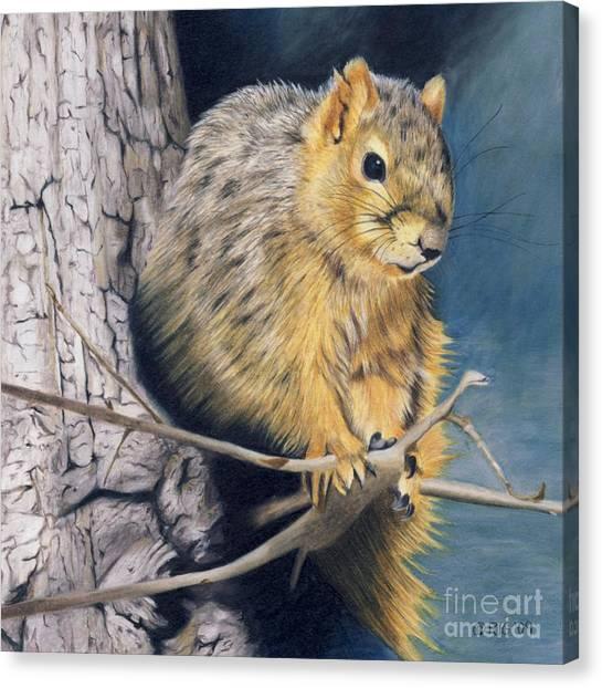 The Nutcracker Canvas Print