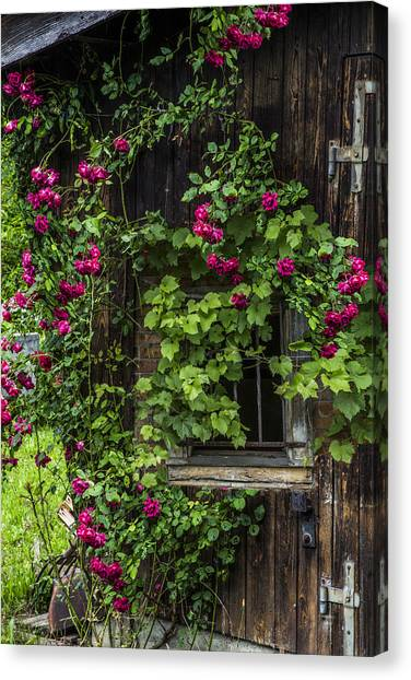 Charming Cottage Canvas Print - The Old Barn Window by Debra and Dave Vanderlaan