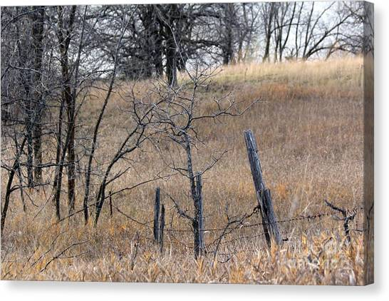 Canvas Print - The Old Fence Line  by Lori Tordsen