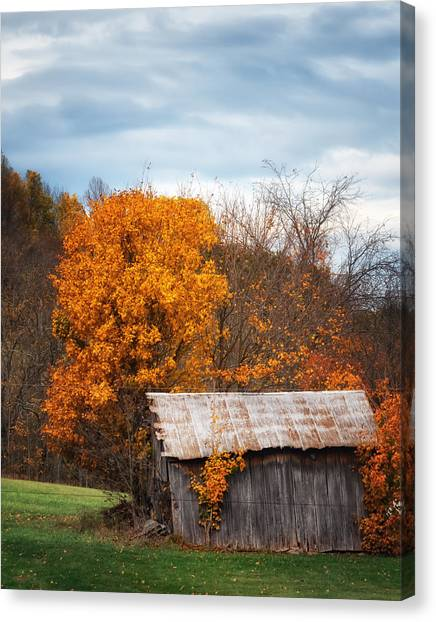 The Old Shed In Fall Canvas Print