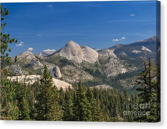 The Other Side Of The Domes Canvas Print