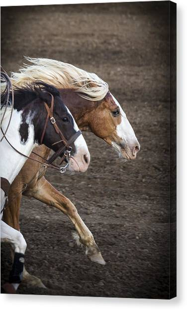 Bareback Canvas Print - The Outlaw And The Law by Caitlyn  Grasso
