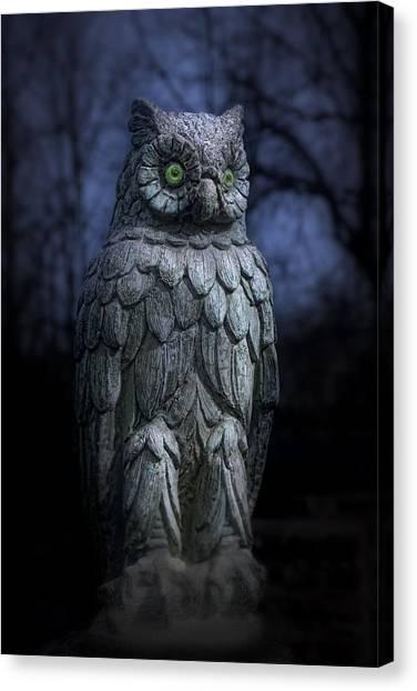 Statue Canvas Print - The Owl by Tom Mc Nemar