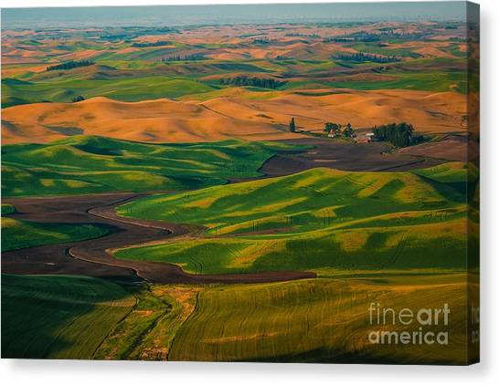 The Palouse Waves Canvas Print