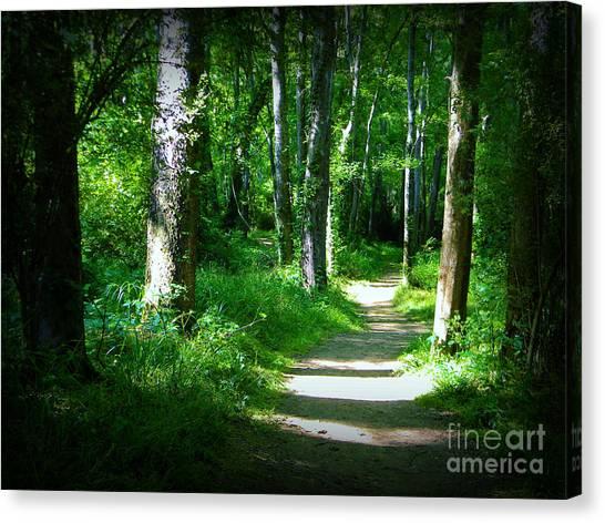 The Path Canvas Print by Lorraine Heath