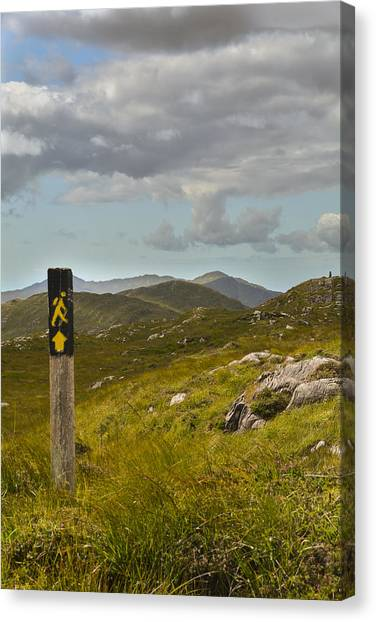 The Path To The Hills Canvas Print