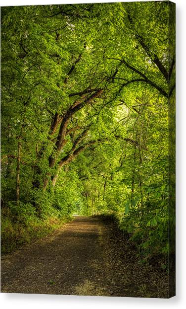 The Path To Wildcat Park Canvas Print