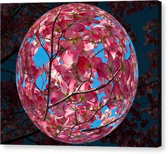 Canvas Print featuring the photograph The Peach Tree Sphere by William Havle