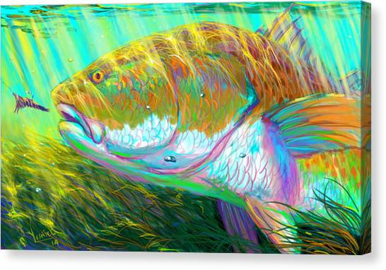 Spearfishing Canvas Print - The Perfect Fly For The Perfect Moment  by Yusniel Santos