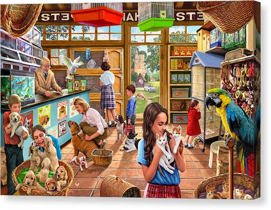 Canaries Canvas Print - The Pet Shop by Steve Crisp