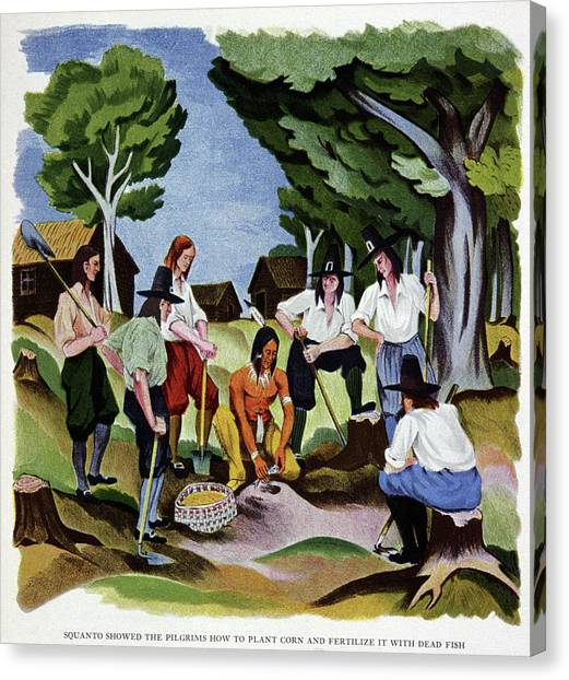 Fertilize Canvas Print - The Pilgrims Learning To Farm by Cci Archives