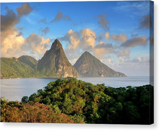 The Pitons - Saint Lucia Canvas Print by Brendan Reals