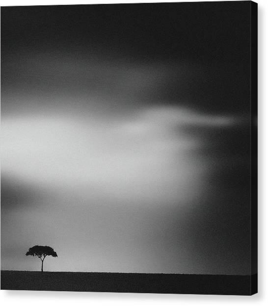 Desolation Canvas Print - The Plains by Piet Flour